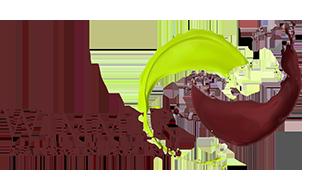 Wimmer Logo